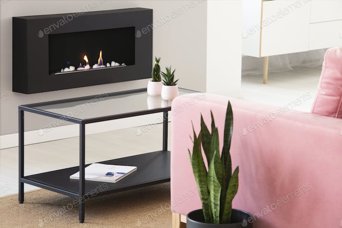Plants on table between pink couch and black fireplace in bright