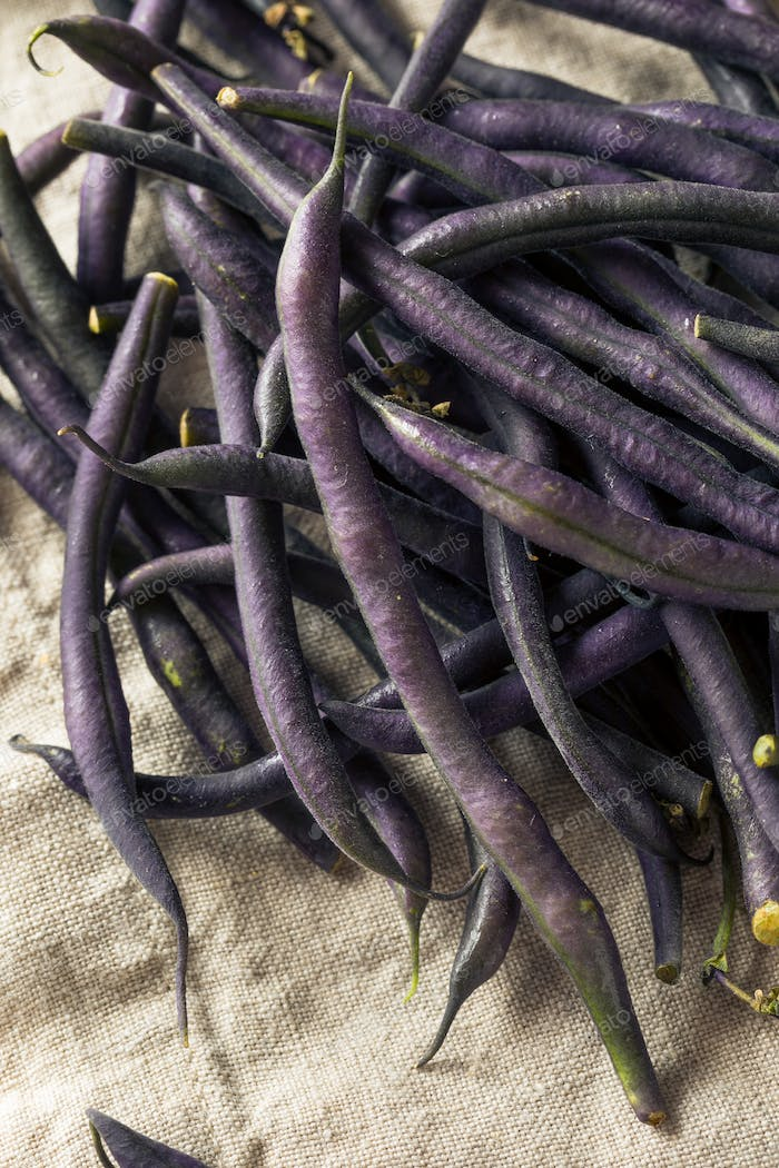 Raw Purple Organic String Beans