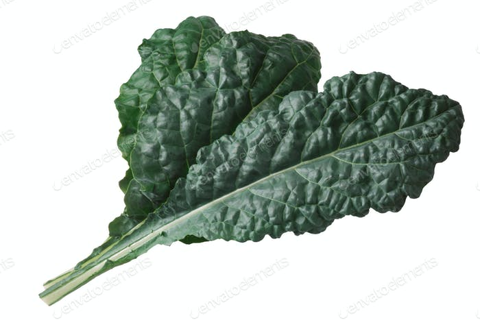 Curly leaf cabbage kale Tuscan