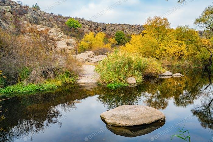 Una corriente limpia y rápida corre entre piedras mojadas suaves rodeadas de grumos altos y secos