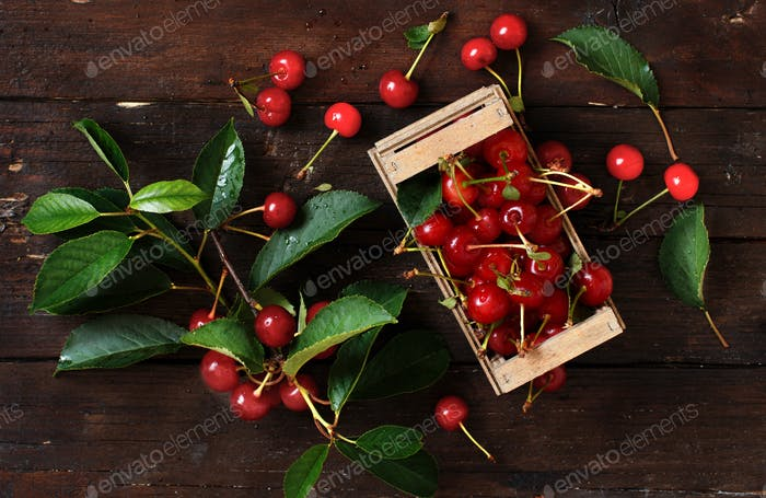 Fresh sour cherries in a box on a wooden table