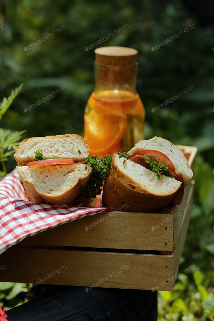 Picnic - Sandwiches and Lemonade