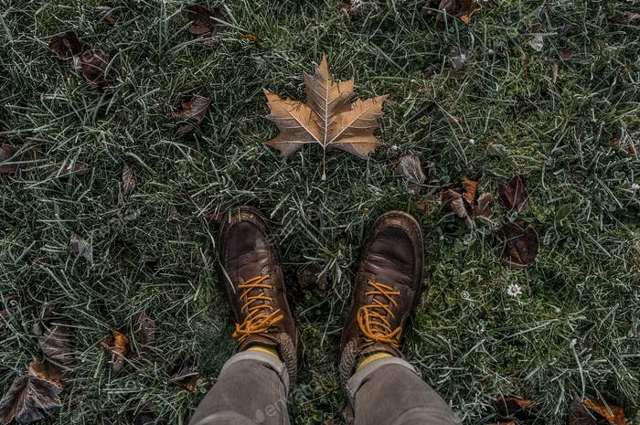 Standing on the frozen meadow