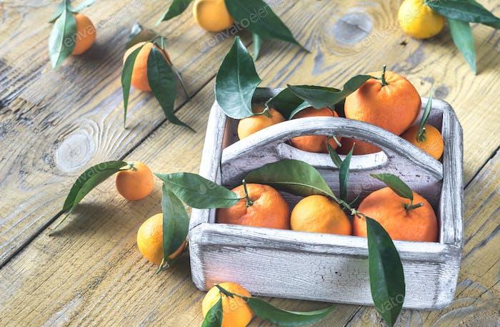 Frische Mandarinen in der Holzkiste