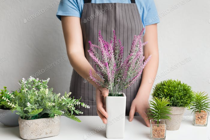 Designer in apron putting lavender plant on table