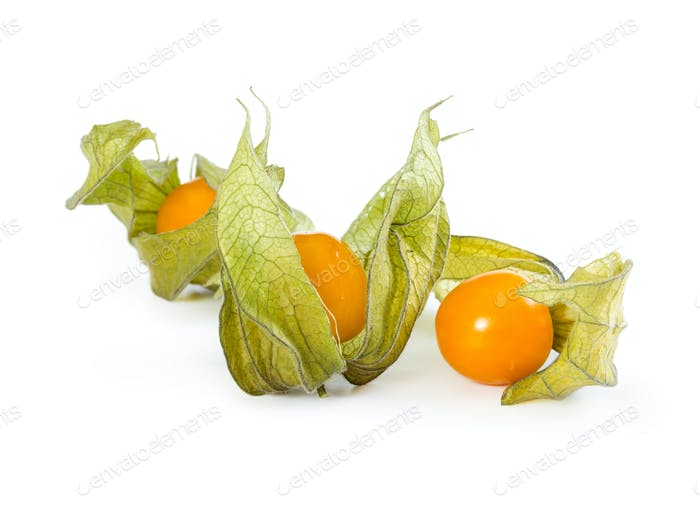 Physalis peruviana isolated on white background.