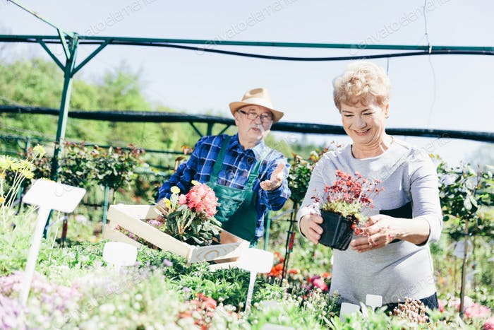Senior couple picking plants in a garden center.