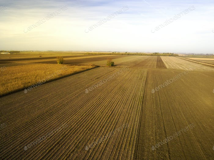 Agricultural Fields Autumn