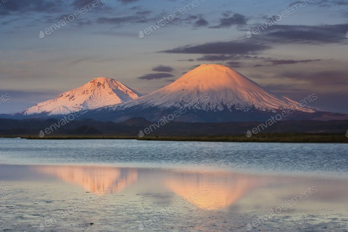 Payachata Volcanoes in the Chilean Andes, Luaca National Park, Chile