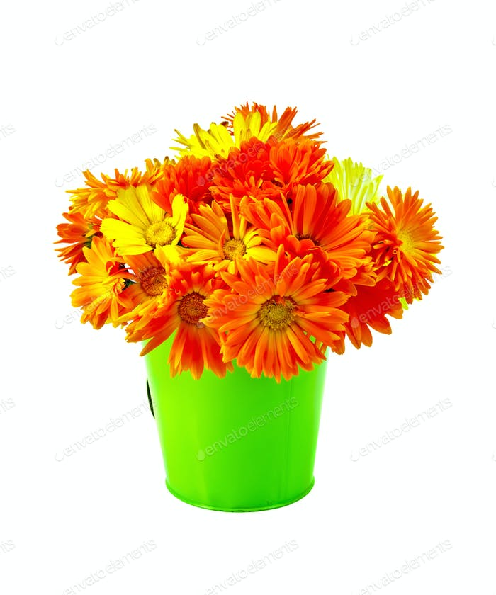 Calendula yellow and orange bouquet in a bucket