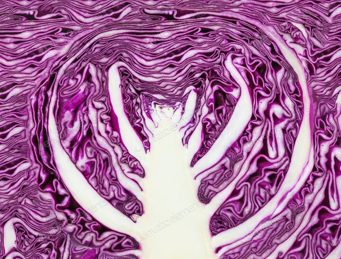 ornament from texture of sliced red cabbage