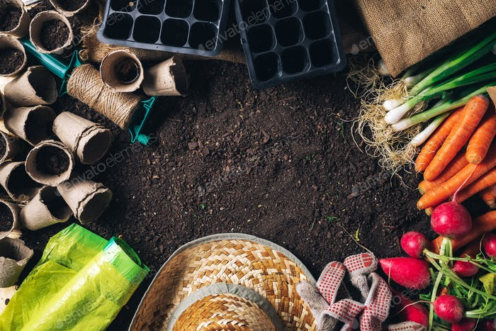 Organic homegrown produce and gardening equipment with copy spac