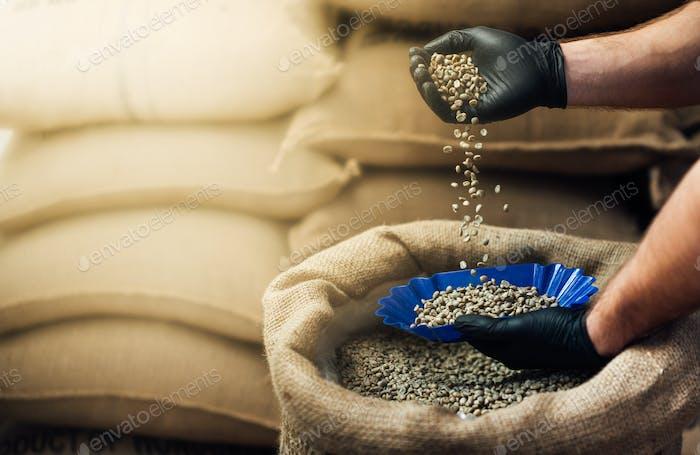 gießen Kaffee aus einem Sackleinen Beutel in eine Schüssel zum Verkosten,