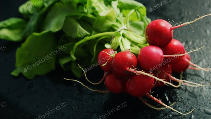 Bunch of ripe radish