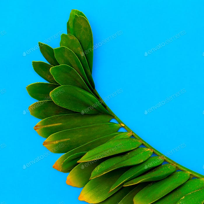 Tropical palm leaf Minimal Art