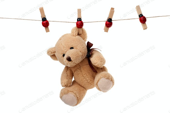 Teddy bear hanging on clothesline