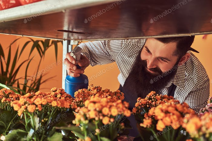 Professional male florist in flower shop