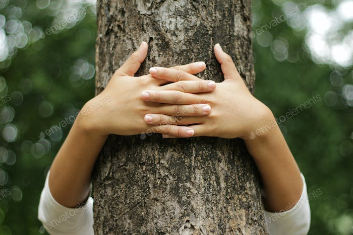 Hands hugging a trunk of a tree