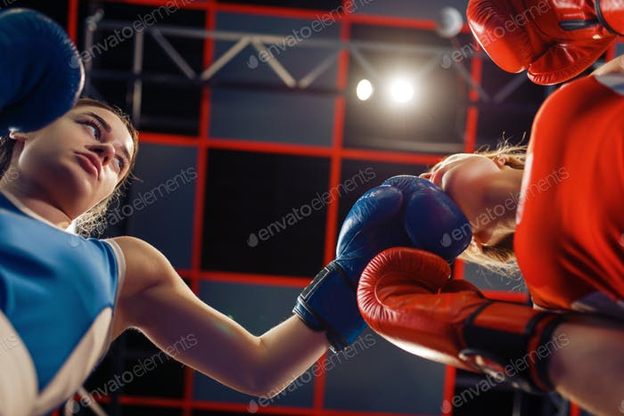 Women in gloves boxing on the ring, bottom view