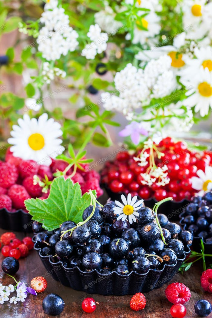 Fresh ripe summer berries - black currant in the foreground and