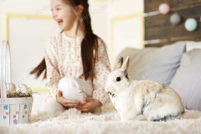 Fluffy Kaninchen essen Heu im Bett