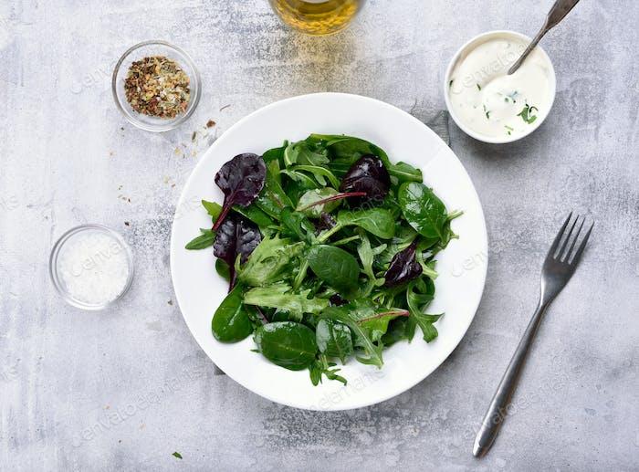 Grüner Salat mit Blättern von Spinat, Rugul