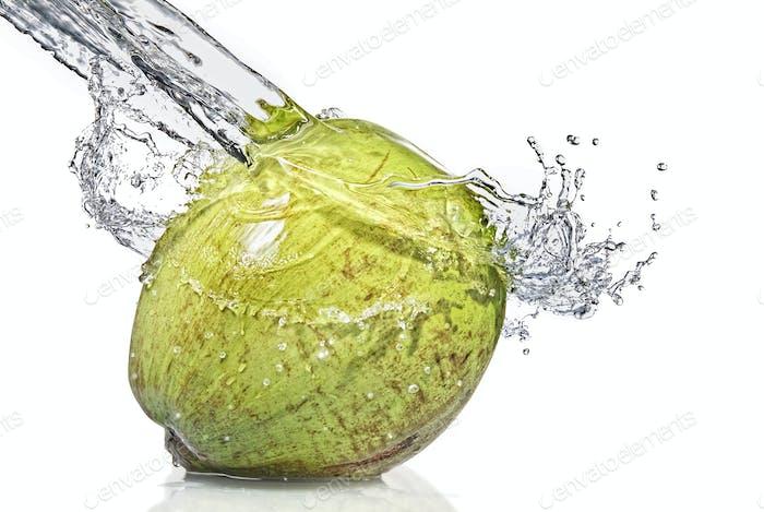 fresh water splash on coconut isolated on white