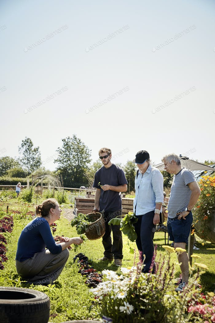 A woman talking to three people about safe edible plants, seeds and flowers.
