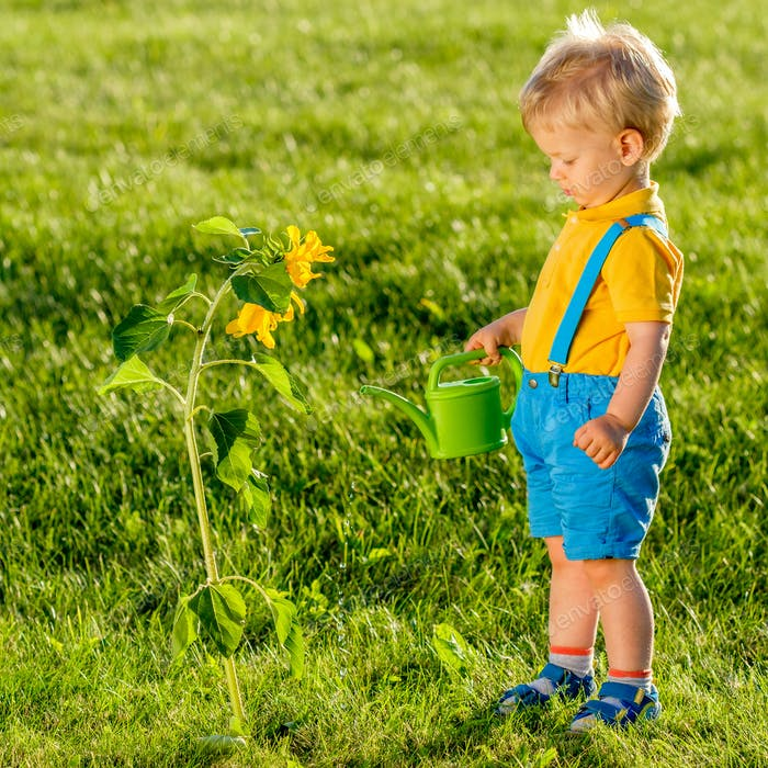 One year old baby boy using watering can for sunflower