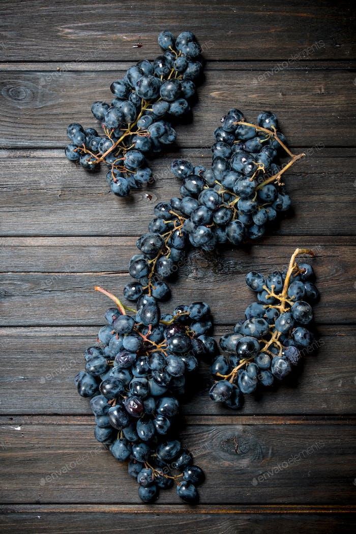Ripe black grapes.