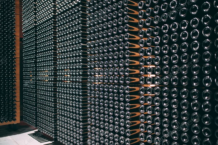 Wine bottles stored in a winery on the fermentation process