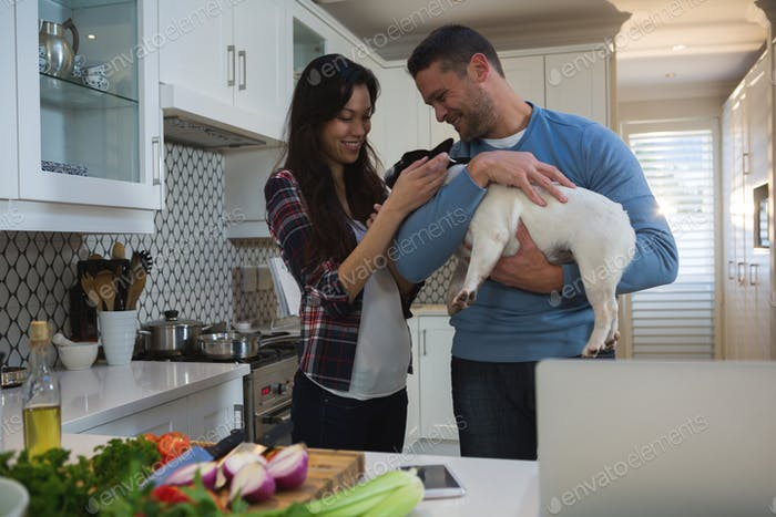Couple playing with their pet dog in kitchen at home