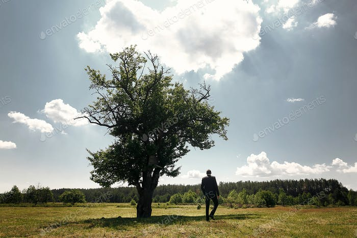 groom walking at lonely tree in meadow, sunny summer morning