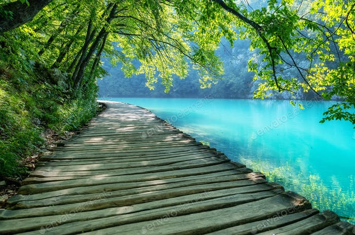 Plitvice lakes in Croatia. Footpath for hiking. Croatian travel image.