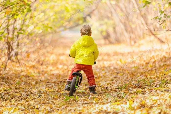 Cute little boy riding learner bike in autumn park
