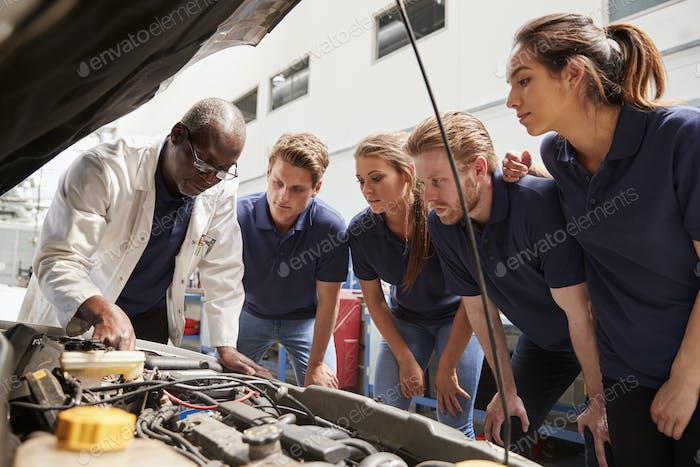 Mechanic instructing trainees around a car engine, low angle
