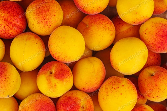 Fresh apricots background