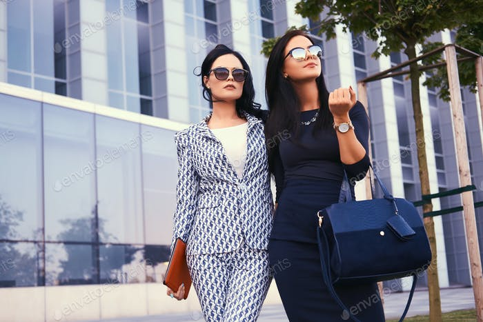 Two business woman dressed in stylish formal clothes