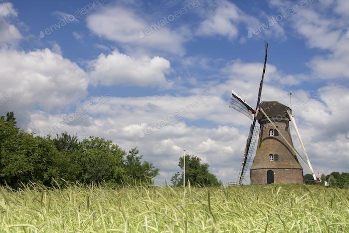 Windmill the Piepermolen