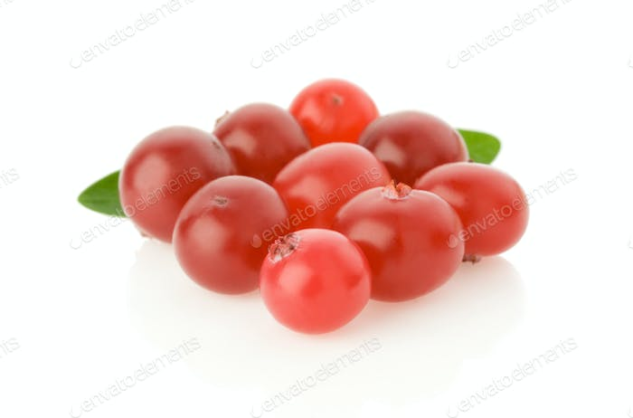 ripe cranberry isolated on white