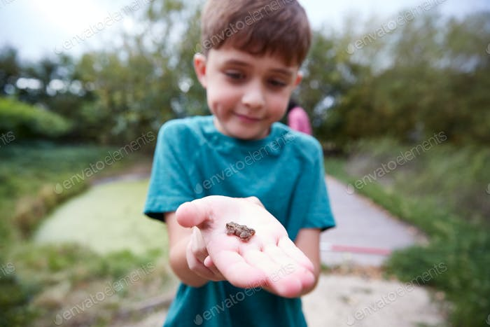 Boy Holding Small Frog As Group Of Children On Outdoor Activity Camp Catch And Study Pond Life