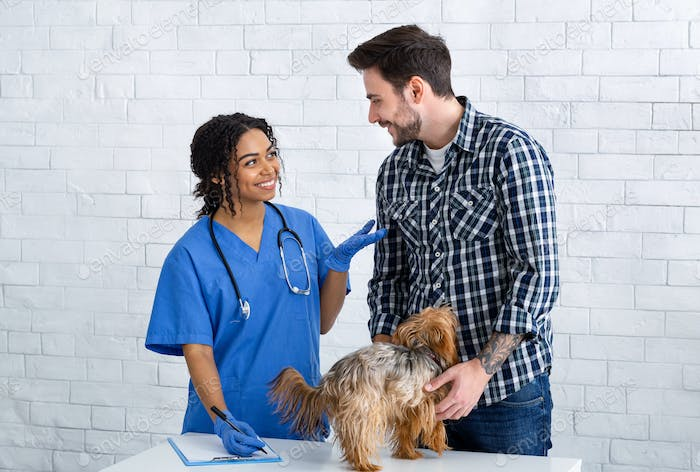 African American vet doc with client and cute doggy in animal hospital