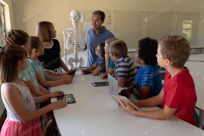 Männlicher Lehrer mit einem Modell eines menschlichen Skeletts zu lehren