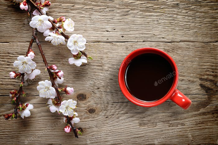 Apricot spring flowers and coffee cup on wooden background