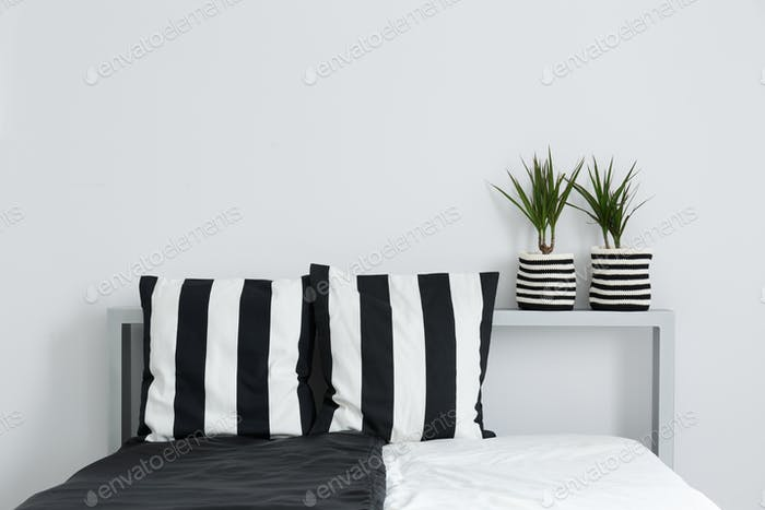 Bed, cushions, and plants