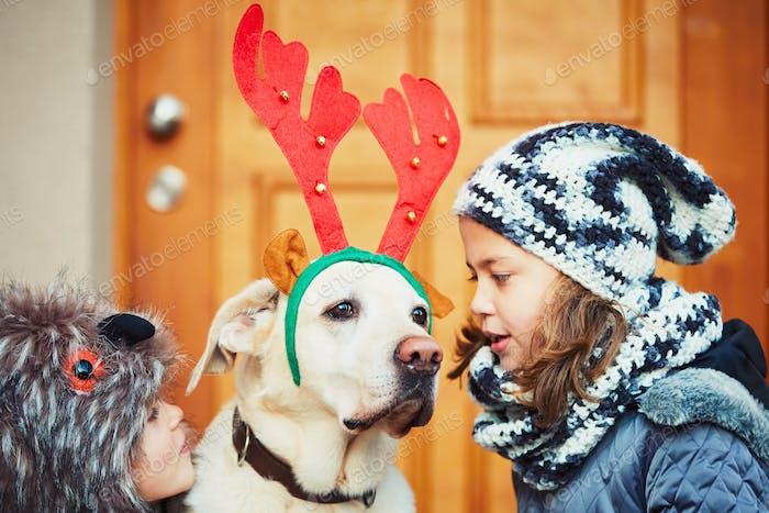 Christmas walk with dog