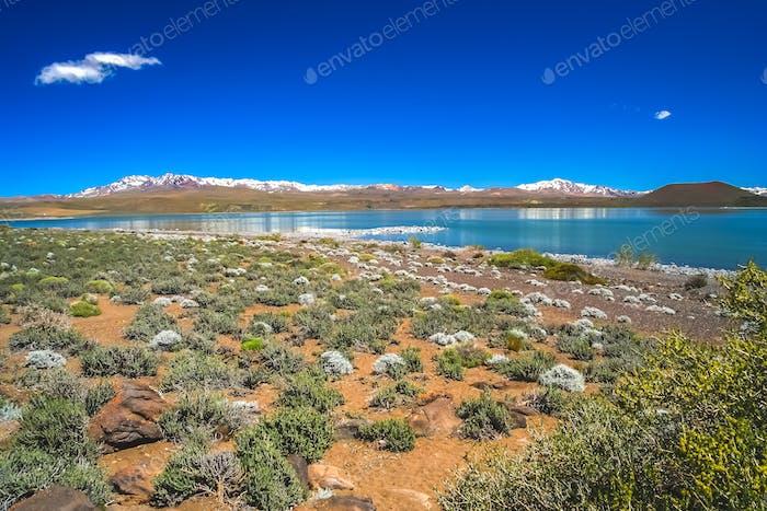 Laguna Blanca lake in Argentina