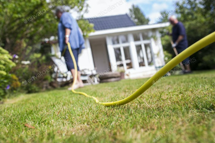 Woman watering plants with garden hose