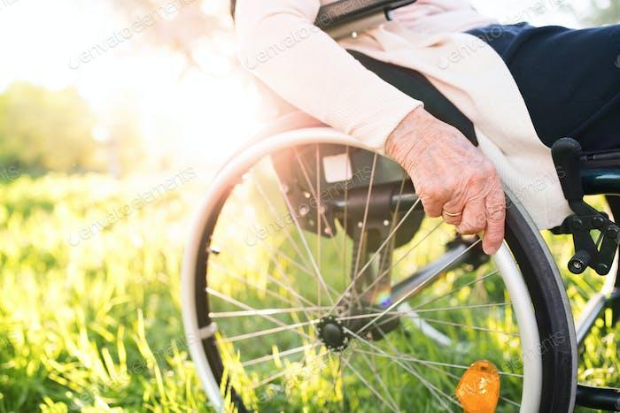 Elderly woman in wheelchair in spring nature.