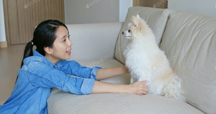Woman cuddle her Pomeranian dog at home